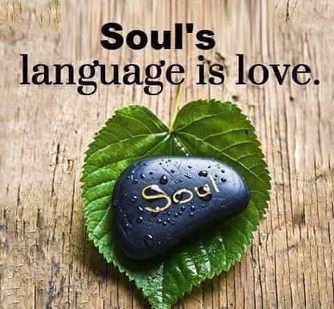 El lenguaje del alma, es el amor