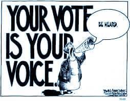 tu voto es tu voz