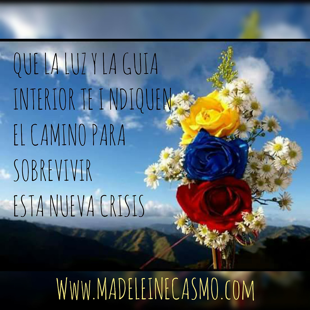 https://www.pinterest.com/madeleinecasmo/1-mi-resiliencia/
