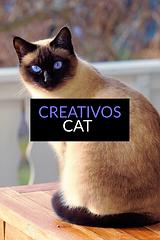 creativoscat_1_original.png