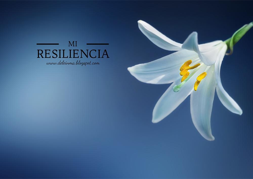 Blog Mi Resiliencia