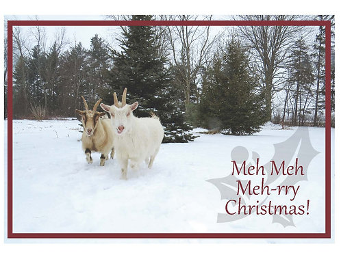 Christmas Card Set - Goats