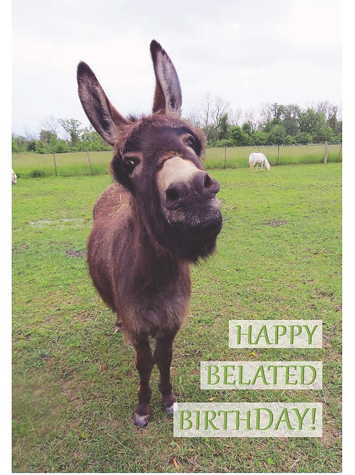 Belated Birthday - Laura