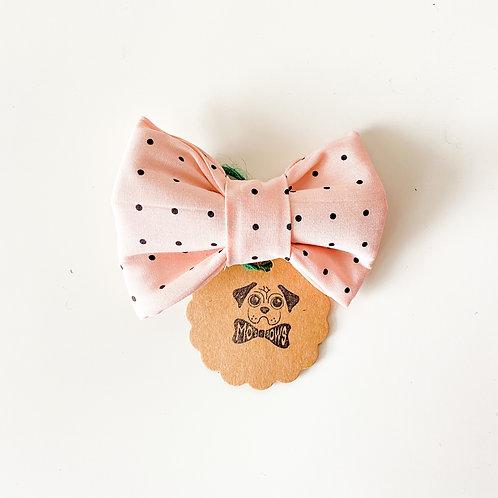 Mo's Bows - Collar Bows (Lacey)