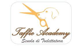 Logo Taffie Academy.jpg