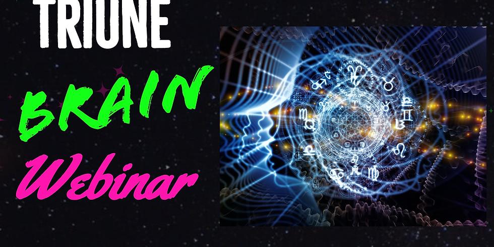 The Triune Brain Webinar