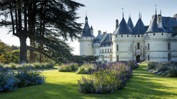 Domaine de Chaumont sur Loire (41)