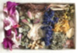 Vita shakti organic herbs .jpg