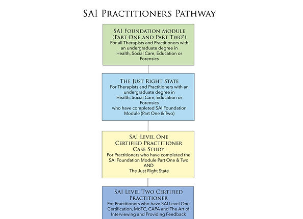 SAI Practitioners Pathway.jpg