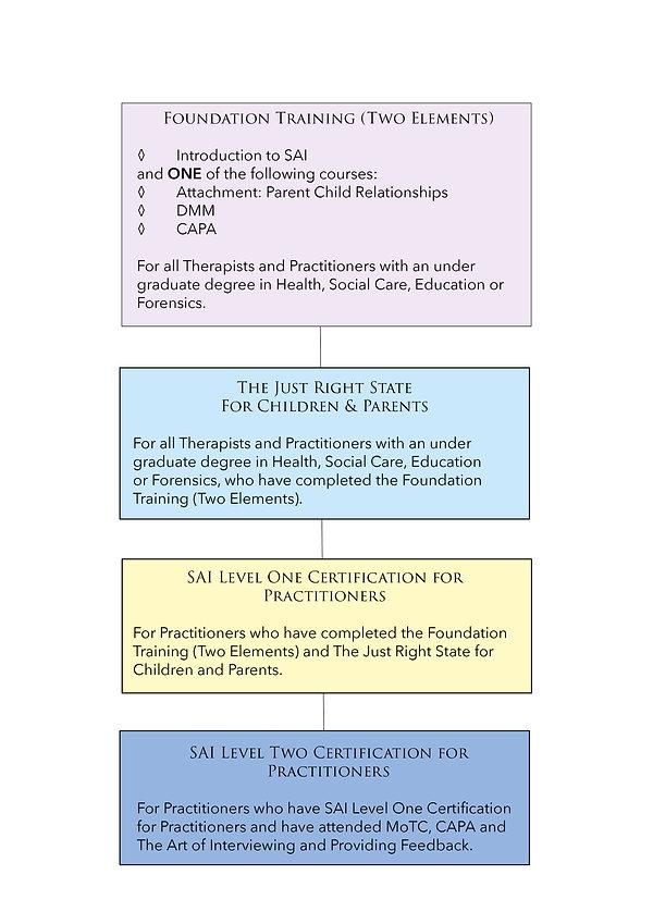SAI Practitioners Pathway 2021.jpg