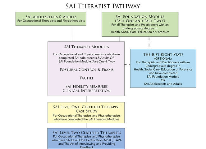 SAI Therapists Pathway.jpg