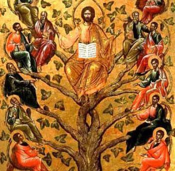 Duminica dinaintea Naşterii Domnului- Copacul Genealogic