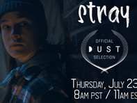 STRAY PREMIERES ON DUST