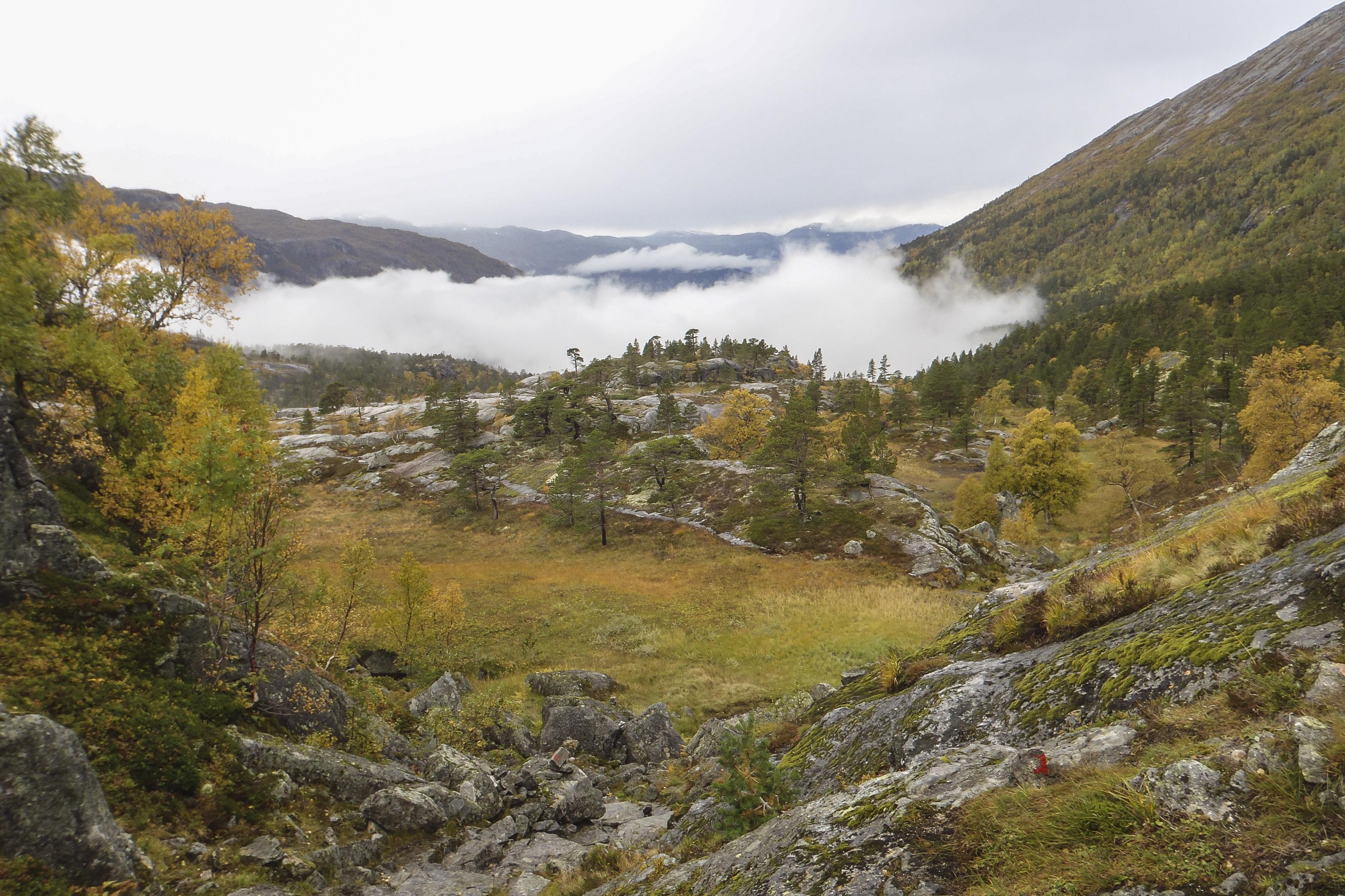 Norsko (4 z 51)