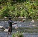 ohinemuri fly fishing.jpg