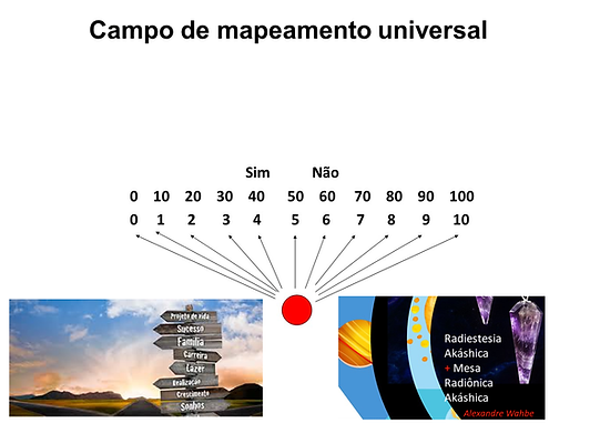 Campo de mapeamento universal.PNG
