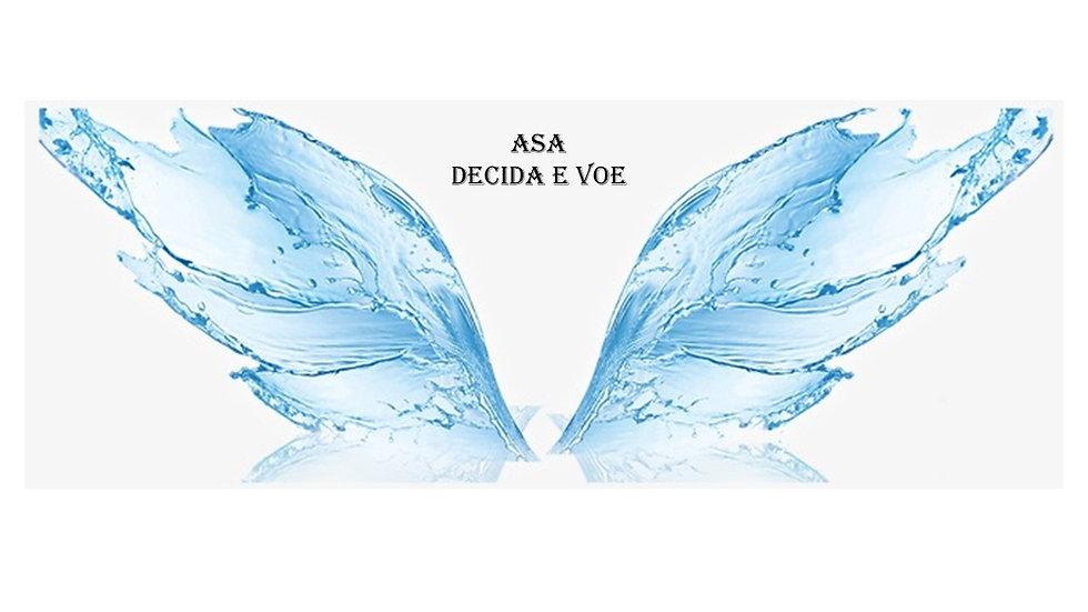 ASA - Decida e Voe