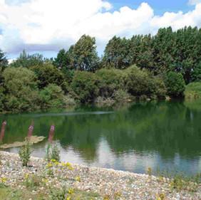 Blashford Lakes!