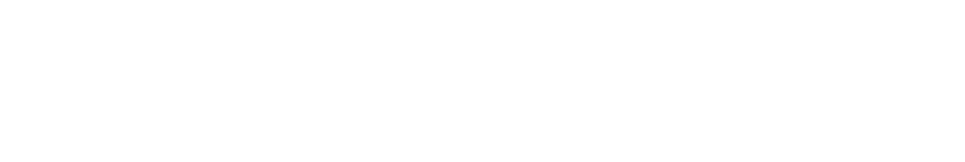Varonis_Logo_White.png