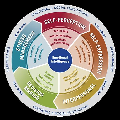 Emotional Intelligence Advantage™ Program