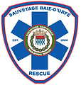 Logo_SBDRS.png
