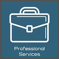 pro services.png
