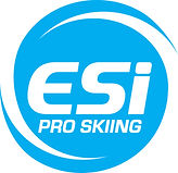 Logo ESI2013 WHITE TEXT.jpg