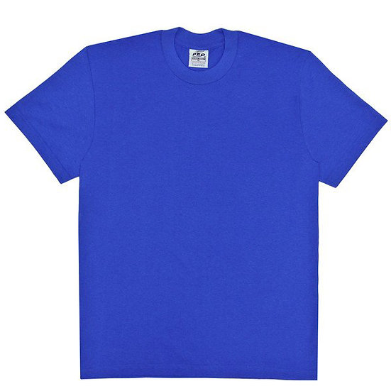 Plain T Shirt Big and Tall Royal Blue