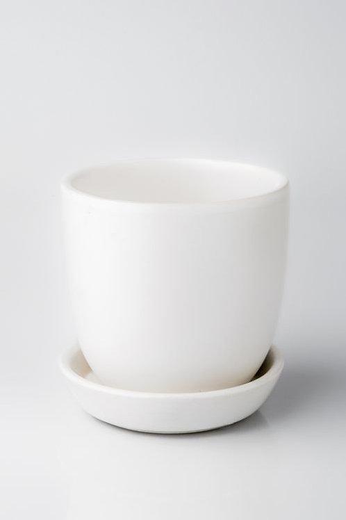 Tulip Pot White 12cm