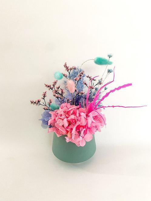 Mini Pink-Blue