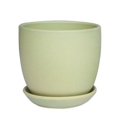 Sage Tulip Pot 12cm