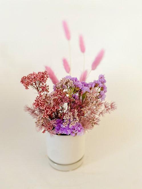 Mini Lilac