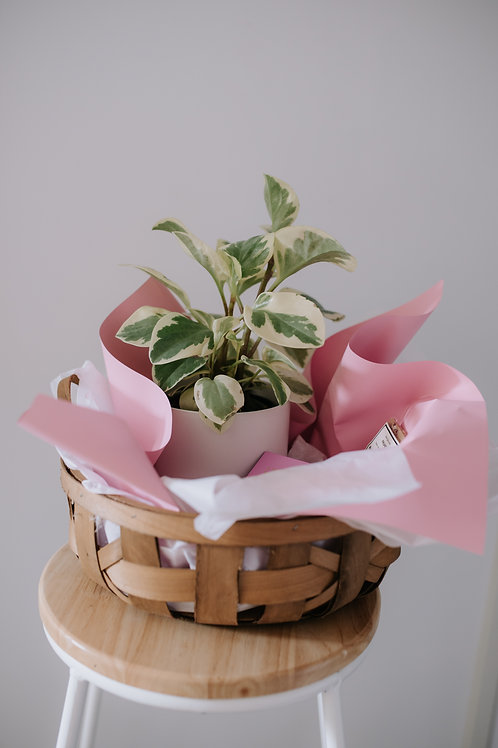 Mother's Day Basket - The Plant Mama