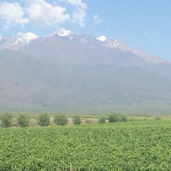Indtryk fra Andes
