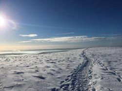 Snowy footsteps.JPG