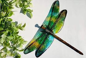 How-to-Make-a-Dragon-Fly.jpg