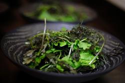 Mesclun de Salad
