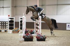 Carlos_—_at_Addington_Equestrian_2019..j
