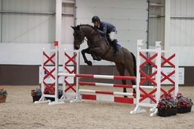 Chacco_Nero_—_at_Addington_Equestrian_20