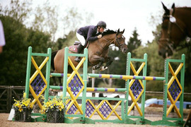 Jalanna British 6yr old two - Addington