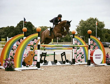 Jammy Dodger two 5yr old Final -Addingto