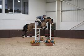Ica_D_Emma_Z_—_at_Addington_Equestrian_2