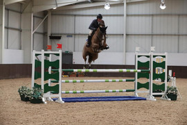Jammy_Dodger_—_at_Addington_Equestrian_2