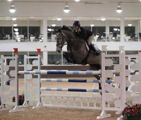 Conway_—_at_Addington_Equestrian_2019..j