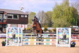 Hamlet VII - Bred by Castell Sport Horses BY Lord Castell X Kojak May Chepstow.jpg