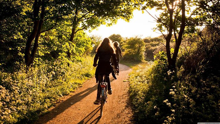 sunlight_trees_tracks_women_forest_women