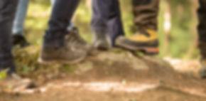 Wald-289_edited.jpg
