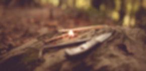 Wald 152.jpg