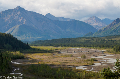 Denali National Park - How Small We Are