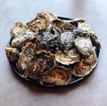Dooncastle Oysters